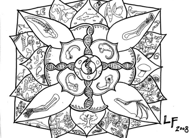 Mandala BW.png